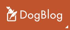ドッグサロンコロル ブログ